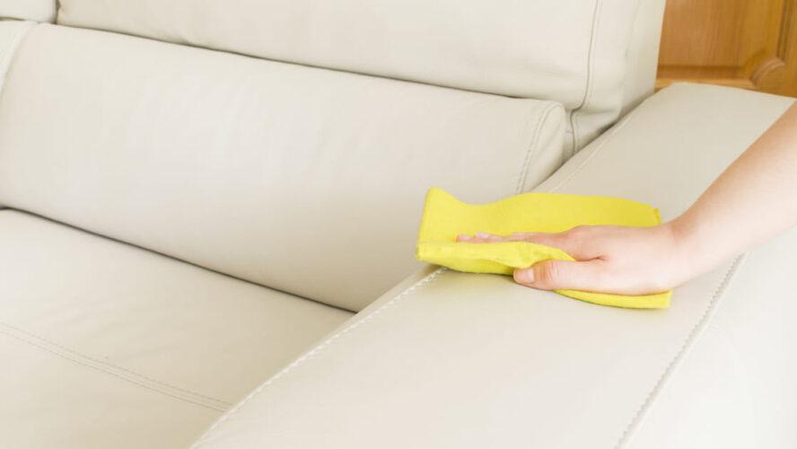 5 passos para fazer a limpeza diária do seu sofá