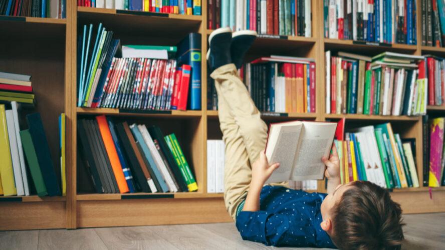 4 modelos de estante de livros